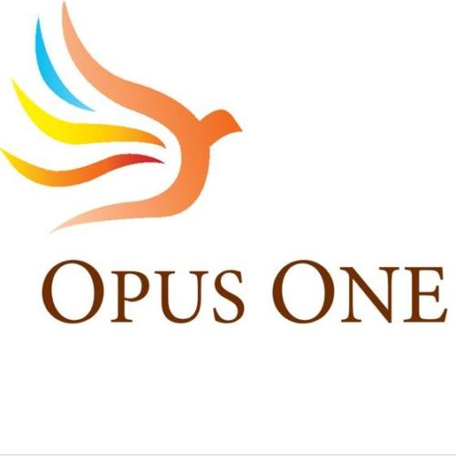 Opus One Investments Pte, Ltd